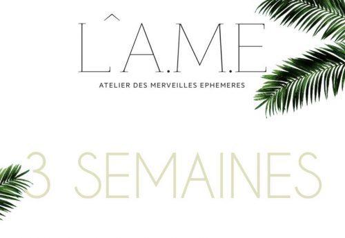Programme des soirées l A.M.E du Festival de Cannes