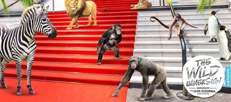 Cannes 2018 Wild immersion une expérience unique Plage du Majestic